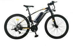 Hoogwaardige, 500 W, 48 V, Smart Controller, lithiumbatterij van 350 W, elektrisch Mountainbike Elektrische fiets