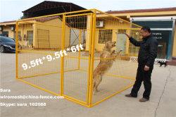 Grande fossa di scolo del cane o gabbia superiore del cane da vendere (XMS138)