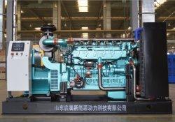 Générateur de puissance générateur à turbine à gaz de Biogaz/du gaz naturel/GPL/générateur de gaz propane 140KW 150kw