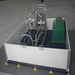 Galvanisé à chaud Pig Farrowing caisse / Cage pour truies utilisées dans la gueuse de l'équipement