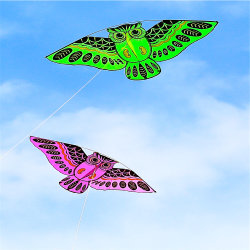 Kids Sport couleur Folk Owl Kite Animal cadeau promotionnel de l'artisanat d'enfants jouet