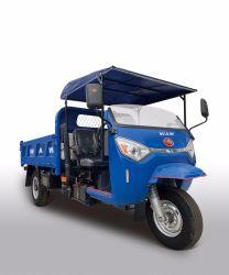 Com Motor diesel 3 Rodas triciclo da China