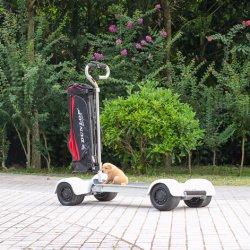 Nuevo 1000W 60V 20.8ah Vehículo Eléctrico Golfboard Ecorider Skateboard Golf