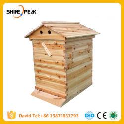 Maison en bois automatique Beehive pour 7 cadres d'équipement de l'Apiculture ruche Honey Bee Hive auto découlant des fournitures d'outils d'apiculteur