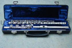 Anfänger-vorbildliche Flöte --Inline-Art des geöffneten Loch-17