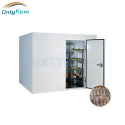 Solar Power Cold Room 냉동고 산책 상업 산책 큰 실드 도어가 있는 냉동고