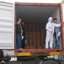 Korrel van het Knoflook van de Advertentie van de Verpakking van aluminiumfoliën de Bulk voor de Fabriek van de Snack