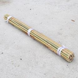 L'agriculture Bambou droites à sec de poteaux de soutien pour l'usine, le jardinage, ferme, décoration maison