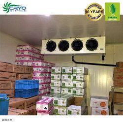 60La GAC salle de stockage à froid pour fruits et légumes de la viande d'aliments surgelés