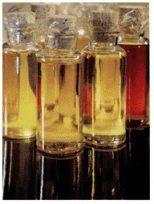 세련된 옥수수 기름
