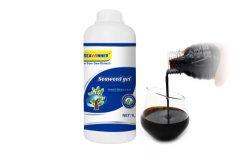 海藻機能肥料黒いブラウンの海藻ゲル