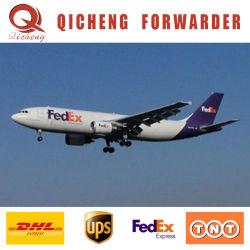 En el Reino Unido de la puerta del Reino Unido Servicio de DHL Express Jubail Karachi Consignataria China a Italia