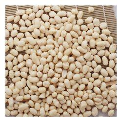 Geblichene Erdnuss-Kerne