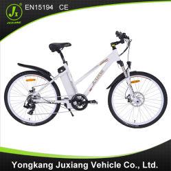 전기 자전거 Tdf26z