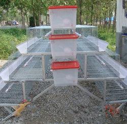 판매를 위한 자동적인 계란 층 닭 농장 놓는 암탉 가금 감금소
