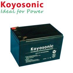 Lange Lebensdauer-Solarbatterie-Solarbatterie-Lösungen der gute Qualitätsbatterie-12V 12ah