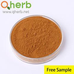 Polvere acida di Carnosic dell'estratto del foglio della Rosemary per il supplemento