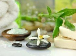 100% pur Saveur de Vanille en poudre organique naturel