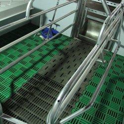 Engradado em parição semeia Usar Régua de PVC Parição Crate exploração de suínos com alta qualidade
