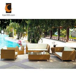 American Standard de haute qualité de meubles en rotin Blooma Jardin de canne à sucre (WS-06006)