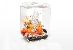 Fish Tank Tabla acrílico personalizado
