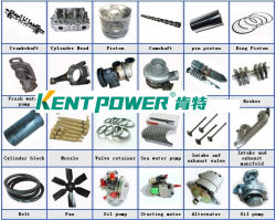 Controller/AVR/filtro/Sensor/Solenóide/actuadores/Bridge Electrice Peças do Motor Cummins de Peças de grupo gerador de energia/Perkin/China Acessório de marca para o gerador diesel