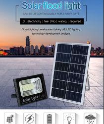 L'éclairage extérieur de la Télécommande étanche IP67 30W/50W/80W/100W Projecteur LED pour panneau solaire