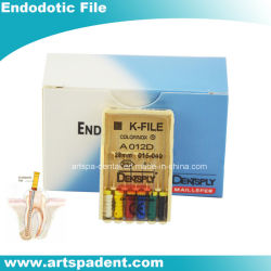 Endodotic dentaire Dentsply K-fichier Root fichier Cannal main