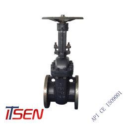 La température normale en acier inoxydable et Moyenne Pression Vanne de boue en acier moulé