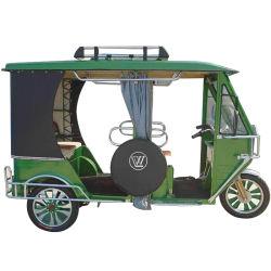 48V1000W Riksja van de Passagier van de driewieler de Elektrische Auto Elektrische/de Milieuvriendelijke Elektrische Driewieler van de Taxi