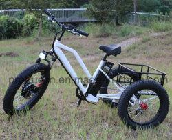 triciclo elettrico della batteria di litio 48V con piccolo carico