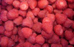 IQF Morangos congelados congelados frutas de bagas congelados