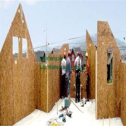 OSB madera para la promoción de los paneles SIP