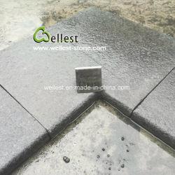 G684 Arc-Shaped Granite de granit noir de la piscine de tuiles d'adaptation, pavés de la piscine avec musoir, la moitié musoir, de la piscine le pontage