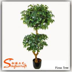 Nuovo disegno decorativo artificiale Ficus Bonsai pianta albero