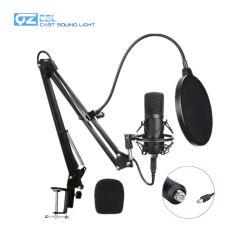 Professionnel OEM BM800/BM700 Microphone à condensateur studio d'enregistrement de chant