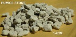 Le sol sans engrais agricole de l'engrais organique de la matrice de pierre ponce