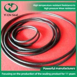 Beständiger NBR /EPDM O-Ring des schnellen Anlieferungs-verschiedenen Qualitäts-haltbaren Öl-
