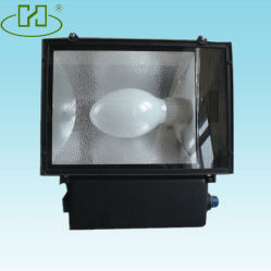 Induction Flood Lamp (HYTGD002)
