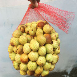 Plastikröhrenineinander greifen-Filetarbeits-Beutel für Gemüse und Frucht