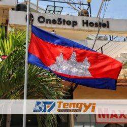 DDP le fret routier au Cambodge par le transitaire en provenance de Chine Services d'agent d'expédition rapide