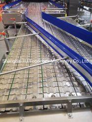 Ss 304 Correa de acero tablilla Industrial Sistemas de transportador de banda de transferencia de las botellas de Ss Transportador de cadena