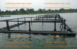水産養殖のPE漁業の熱帯Knotlessネットを耕作する浮遊魚のケージ
