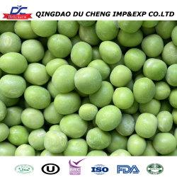 precio de fábrica al por mayor a granel de judías verdes frescas congeladas