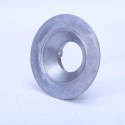 Europese StandaardOEM van de Douane LEIDENE van het Aluminium van het Afgietsel van de Matrijs de Dekking en de Schaduwen van de Lamp