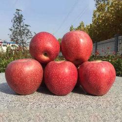Natuurlijke voeding voor Verse Appelen