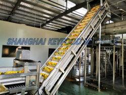 Высокое качество в основном апельсиновый сок или сок из манго производственной линии