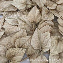 日曜日の維持されたシュロの葉は花のきれいなBohoの装飾のボヘミアのホーム装飾と結婚するシュロの葉を乾燥した