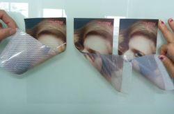 Perforierte Fenster-Grafik-bidirektionaler Anblick