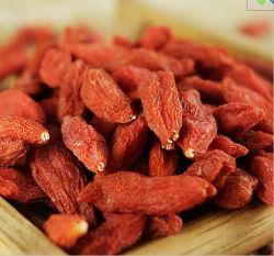 Secado el Rey de Las Bayas de Goji orgánicos Wolfberry Chiness